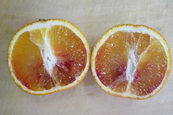 ブラッドオレンジ横からの断面