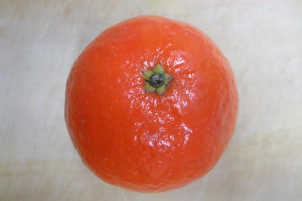 ノバオレンジ